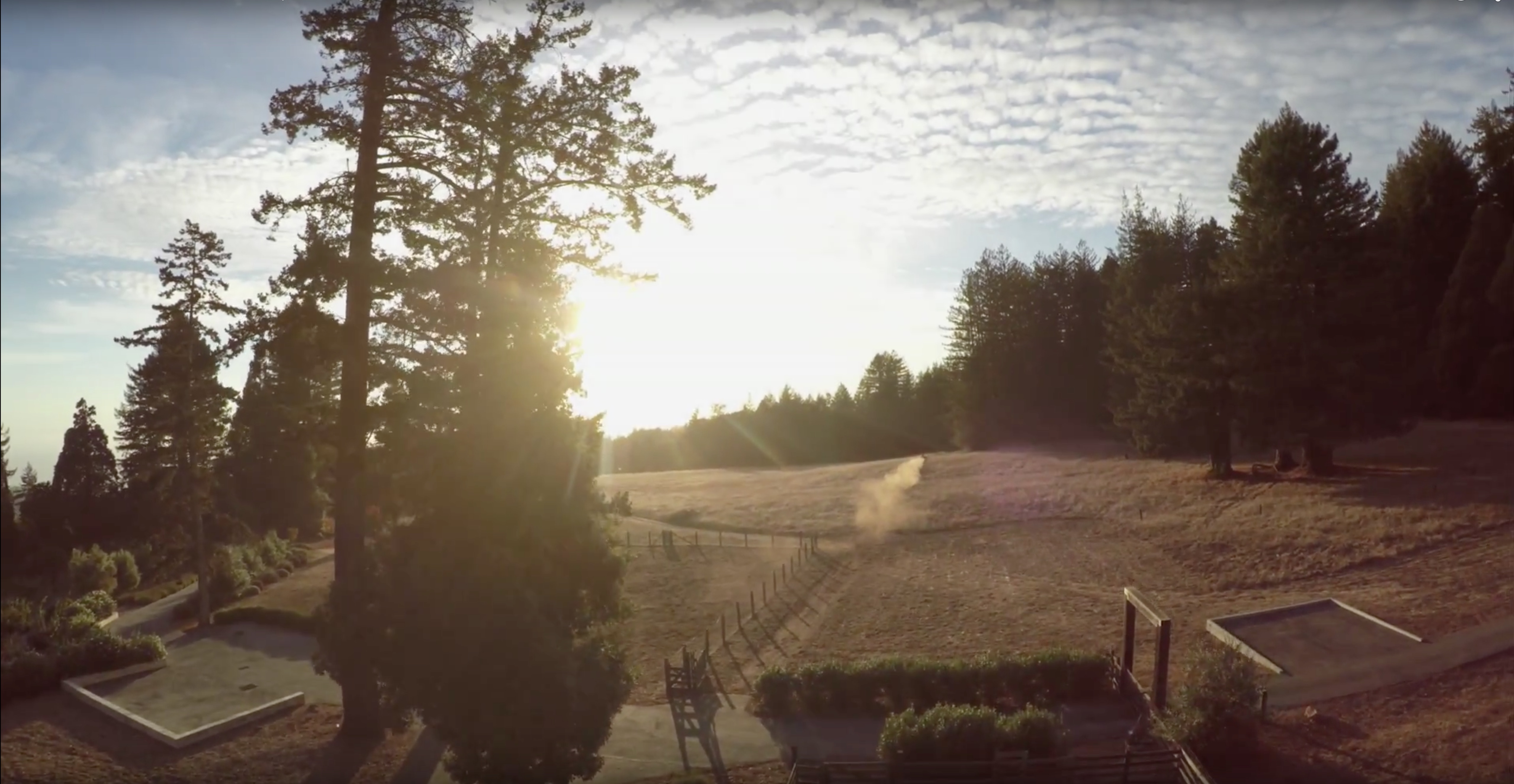 GoProQuadcopter2