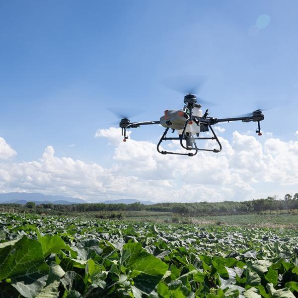 DJI AGRAS Drohne schwebt über einem Acker