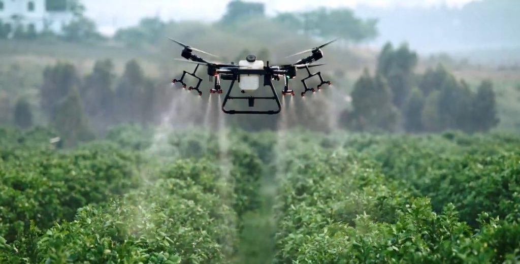 DJI AGRAS Drohne versprüht Pflanzenschutzmittel